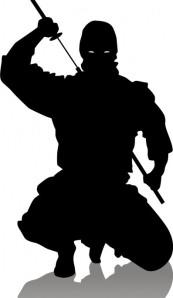 ninja-crouch